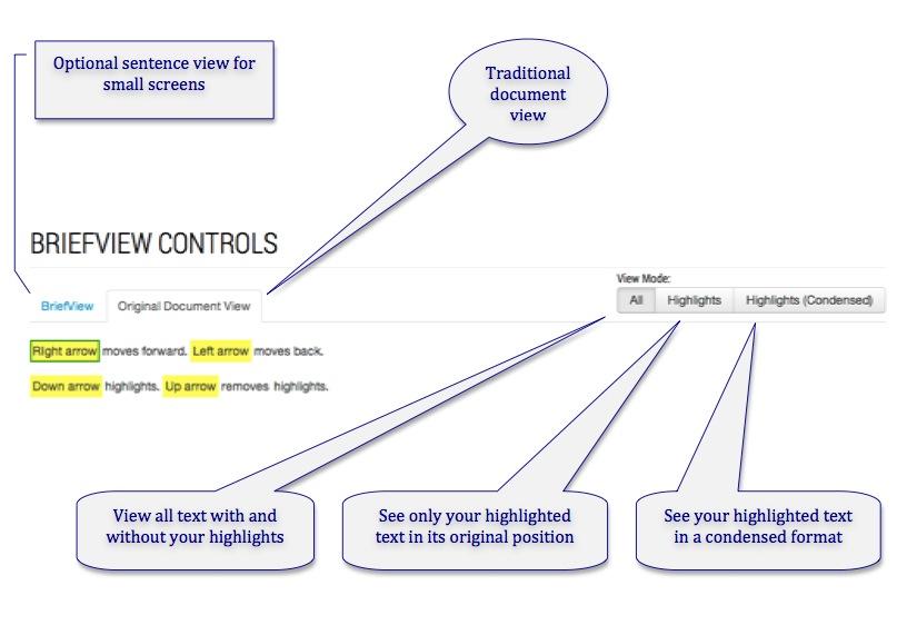 BriefView Controls